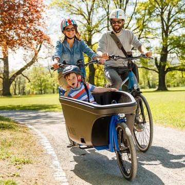 Dolly Family Bafang Mittel Motor Ausflug mit der Family